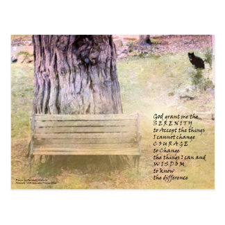 Serenity Prayer Bench, Tree, Cat Postcard