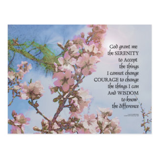 Serenity Prayer Blossoms Sky Tree Postcard