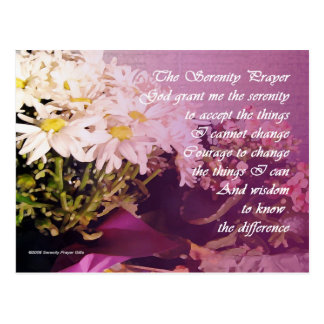 Serenity Prayer Daisies Postcard