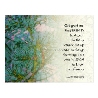 Serenity Prayer Pine Branches Postcard