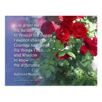 Serenity Prayer Red Roses Postcard