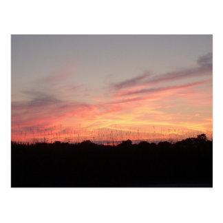 Serenity Series Postcard Night