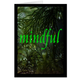 Serenity Word Drops: Mindful Card