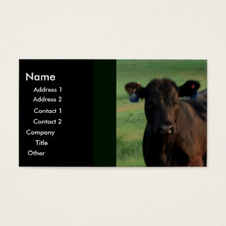 Serious Business Business Card