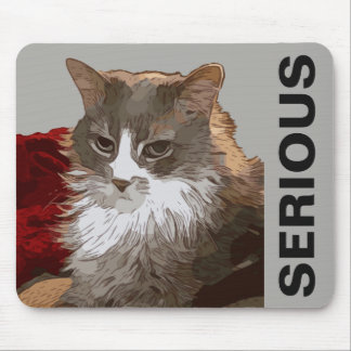 SERIOUS CAT MOUSE PAD