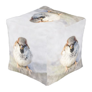 Serious Sparrow Pouf