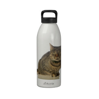 Serious tabby cat reusable water bottles