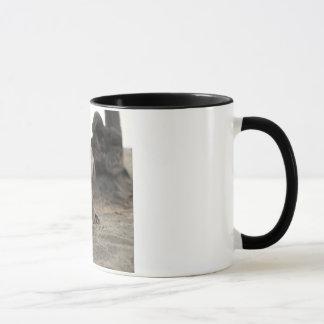 serious wild cat mug
