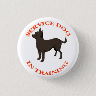 Service Dog In Training button