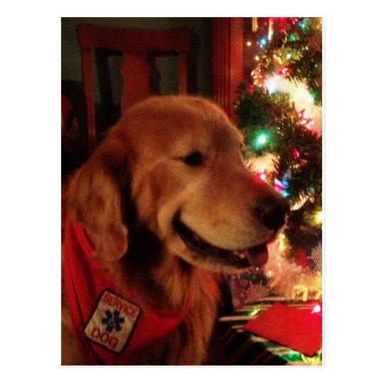 Service Dog Jonah Christmas Postcard