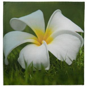 Serviettes Fleur Tropicale Zazzle Ca