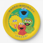 Sesame Street Pals Birthday Paper Plate