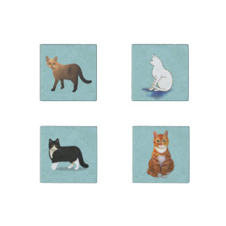 Set of Cats for the Refrigerator Stone Magnets