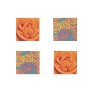 Set of magnets Yellow aqua pink roses Stone Magnets