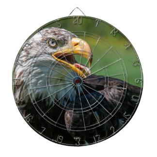 Set of photo darts of eagle dartboard