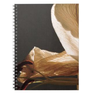 set sails notebook