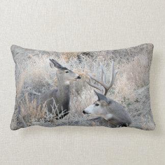 Set Your Sights on Sand Wash Basin Lumbar Pillow