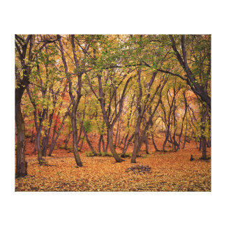 Settlement Canyon Canvas Print