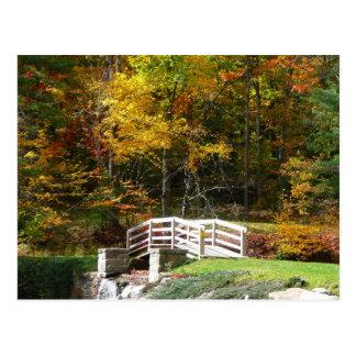 Seven Springs Fall Bridge I Autumn Landscape Photo Postcard