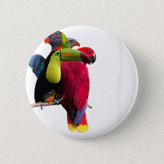 Seven Tropical Bird's 2 Inch Round Button