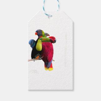 Seven Tropical Bird's Gift Tags