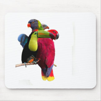 Seven Tropical Bird's Mouse Pad