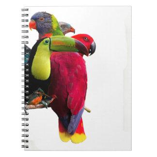Seven Tropical Bird's Notebooks
