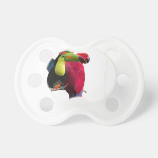 Seven Tropical Bird's Pacifier