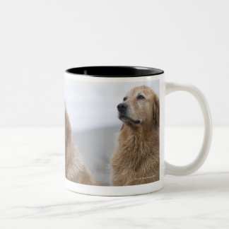 Several Golden retrievers sitting on beach Coffee Mugs