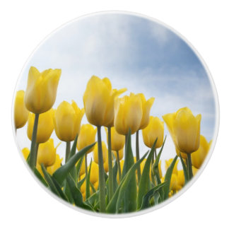 SEVERAL YELLOW TULIPS ON A CERAMIC PULL