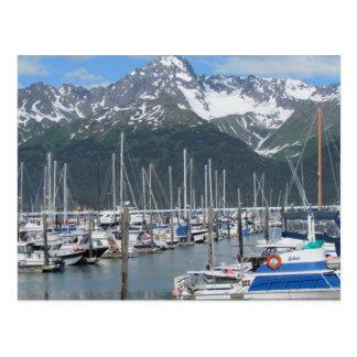 Seward Harbor, Alaska Postcard