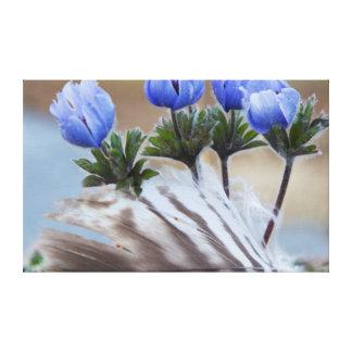 Seward Peninsula, Alaska, Arctic Wildflowers Stretched Canvas Prints