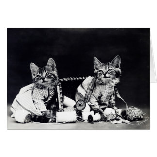 Sewing Kitties Vintage Black and White Card