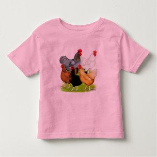 Sex-linked Chickens Quintet Shirts