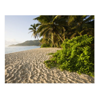 Seychelles, Mahe Island, Anse Marie-Louise Postcard