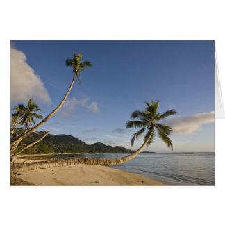 Seychelles, Mahe Island, horizontal palm, Card