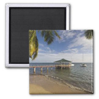 Seychelles, Praslin Island, Anse Bois de Rose, Magnet