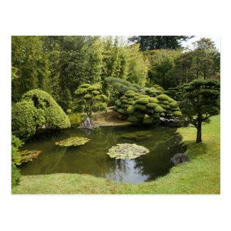SF Japanese Tea Garden Pond Postcard