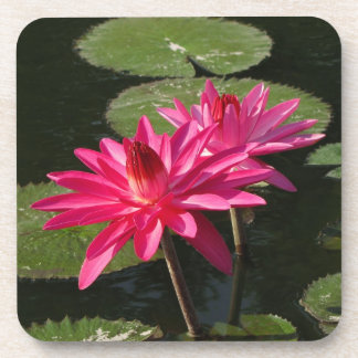 SG 2 Pink Water Lilies Cork Coaster #1  00010