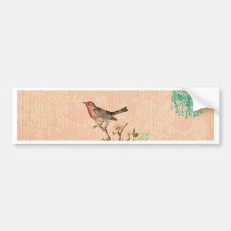 Shabby chic, bird,butterfly,lace,floral,country, bumper sticker