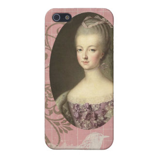 Shabby Chic Marie Antoinette iPhone 5 Case