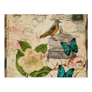 shabby chic rose botanical birdcage french bird postcard