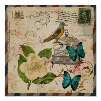 shabby chic rose botanical birdcage french bird poster