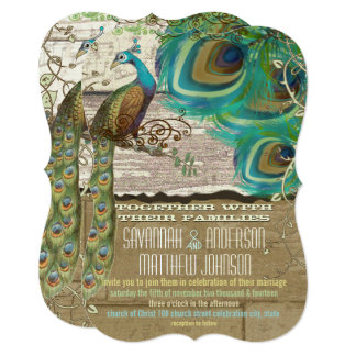 Shabby Country Peacock Vintage 3 Feathers Old Wood Card