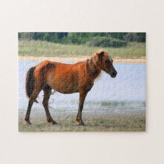 Shackleford Banks Horse Jigsaw Puzzle
