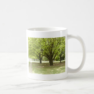 Shade Trees Coffee Mug
