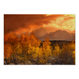 Shades Of Autumn Art Mural Poster