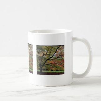 Shades of Autumn, Westonbirt Arboretum Mugs