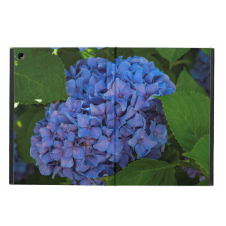 Shades Of Blue - The Blue Hydrangea iPad Air Cover