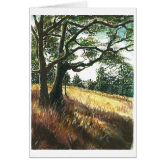 Shades of old trees card